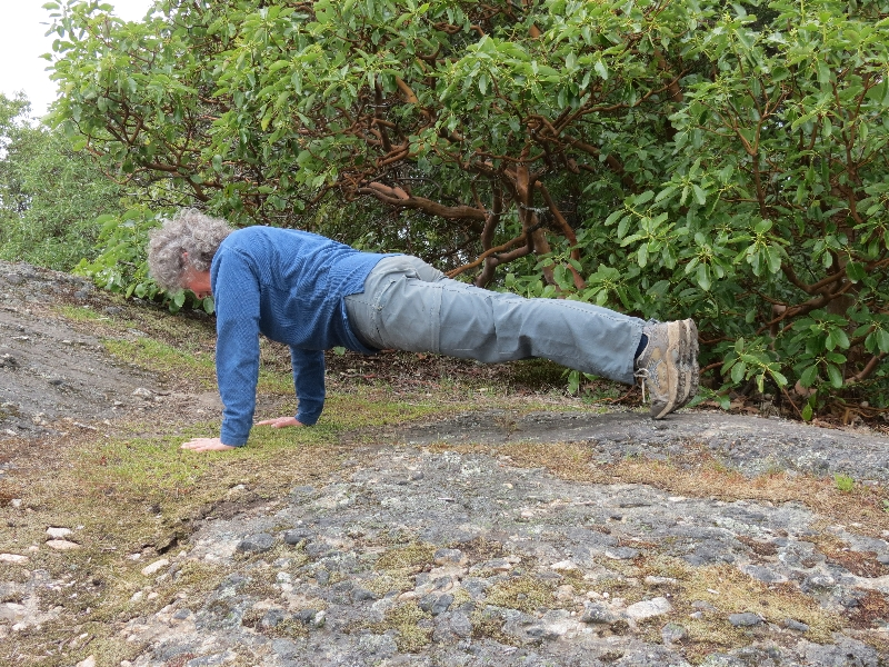 Jenny in Plank Pose (Kumbhakasana or Uttihita Chaturanga Dandasana) near the summit of Mount Tzouhalem, Vancouver Island, B.C. (Photo by Ian Hatter).