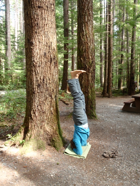 Jenny doing a supported Headstand (Salamba Sirsasana) amid Douglas fir trees at the campsite in Gordon Bay Provincial Park, on Cowichan Lake, Vancouver Island, B.C. (Photo by Ian Hatter)