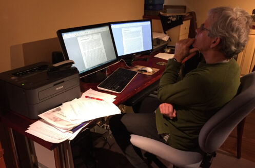 Ian Hatter working on a wildlife policy contract, January 2018