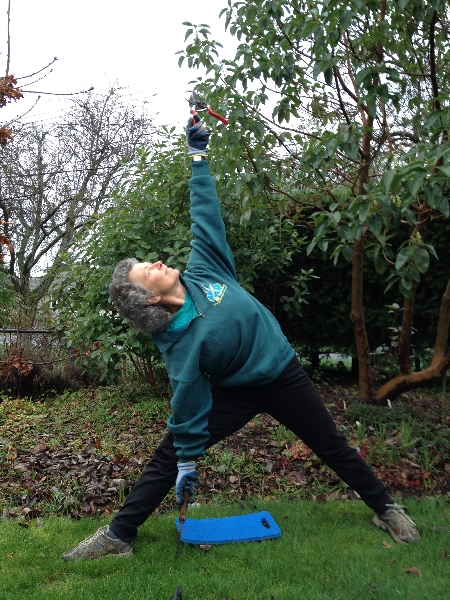 Jenny in Extended Triangle Pose (Utthita Trikonasana), gaze skyward, in her yard in Esquimalt (Victoria), Vancouver Island, B.C. (Photo by Ian Hatter).