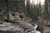 Ian becomes part of this amazing scene as he meditates in Accomplished Pose (Siddhasana) above a natural bridge in the wild upper reaches of Beauty Creek, Jasper National Park, Alberta (Photo by Jenny Feick).